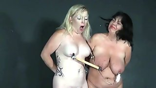 Two amateur slaves nipples clamped and tormented