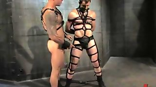 Slave Begs To Be Fucked